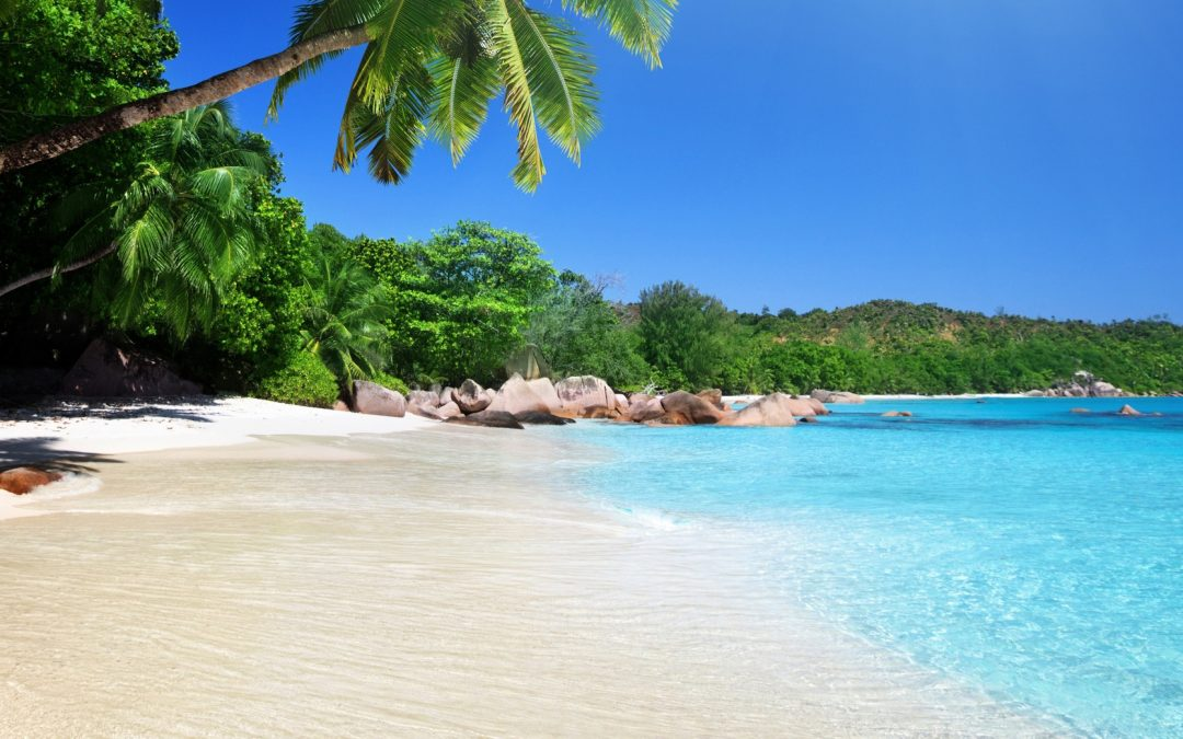 tropical-beach