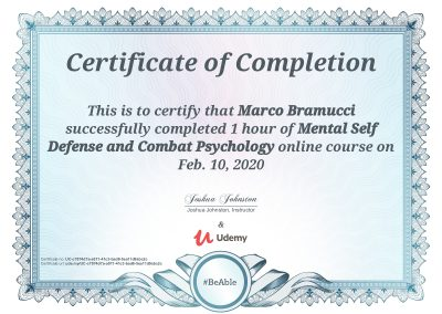 Mental-Self-Defence-and-Combat-Psychology-Levlel-1