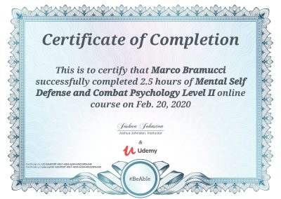 Mental-Self-Defence-and-Combat-Psychology-Levlel-2
